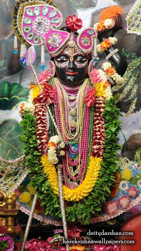 Sri Gopal Wallpaper (022) Size 450x800 Download
