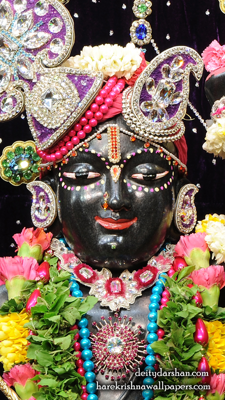 Sri Gopal Close up Wallpaper (022) Size 450x800 Download