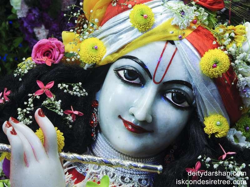 Sri Gopinath Close up Wallpaper  (022)