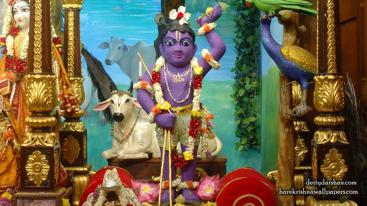 Sri Gopal Wallpaper (023) Size 1280x720 Download