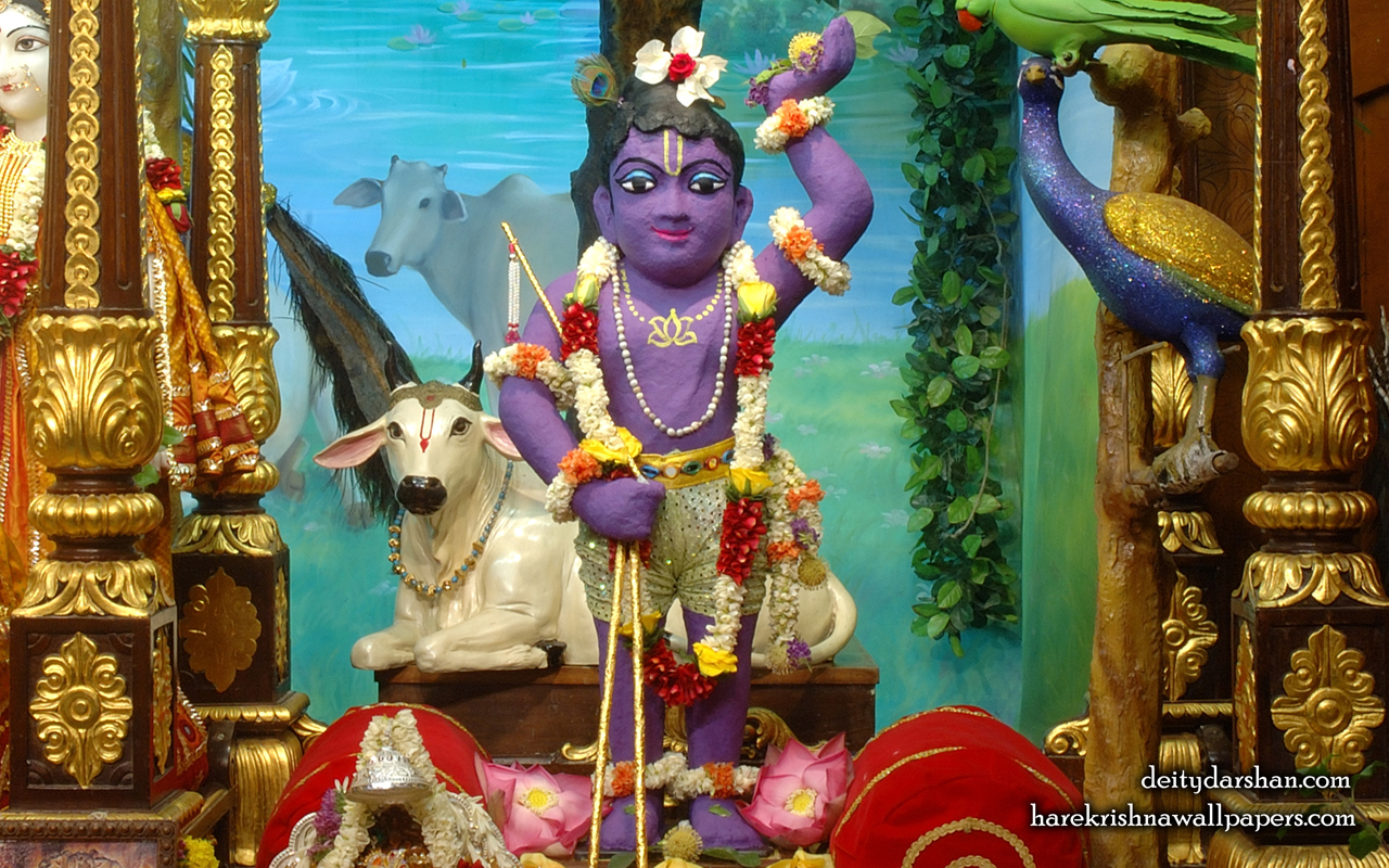Sri Gopal Wallpaper (023) Size 1280x800 Download