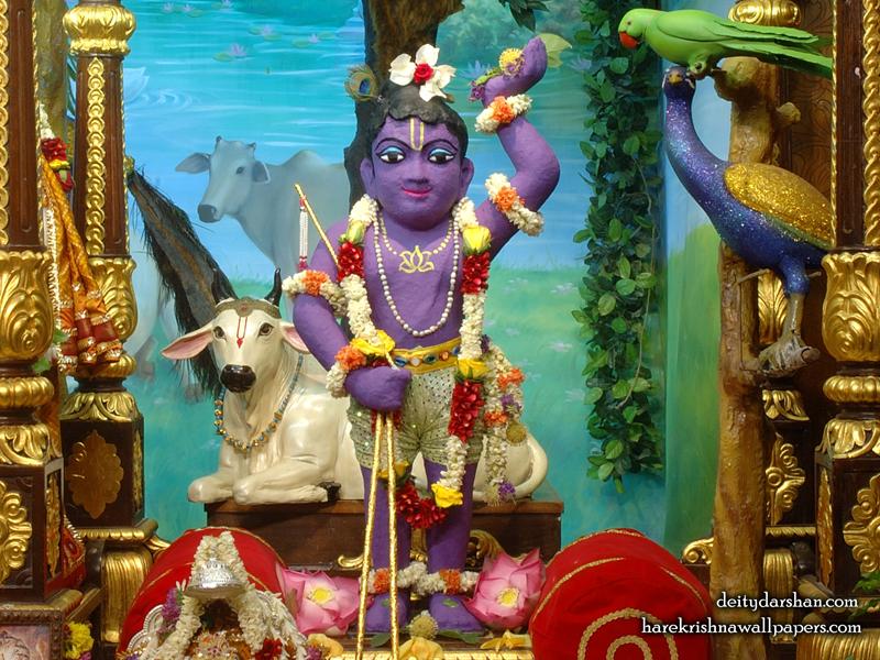 Sri Gopal Wallpaper (023) Size 800x600 Download