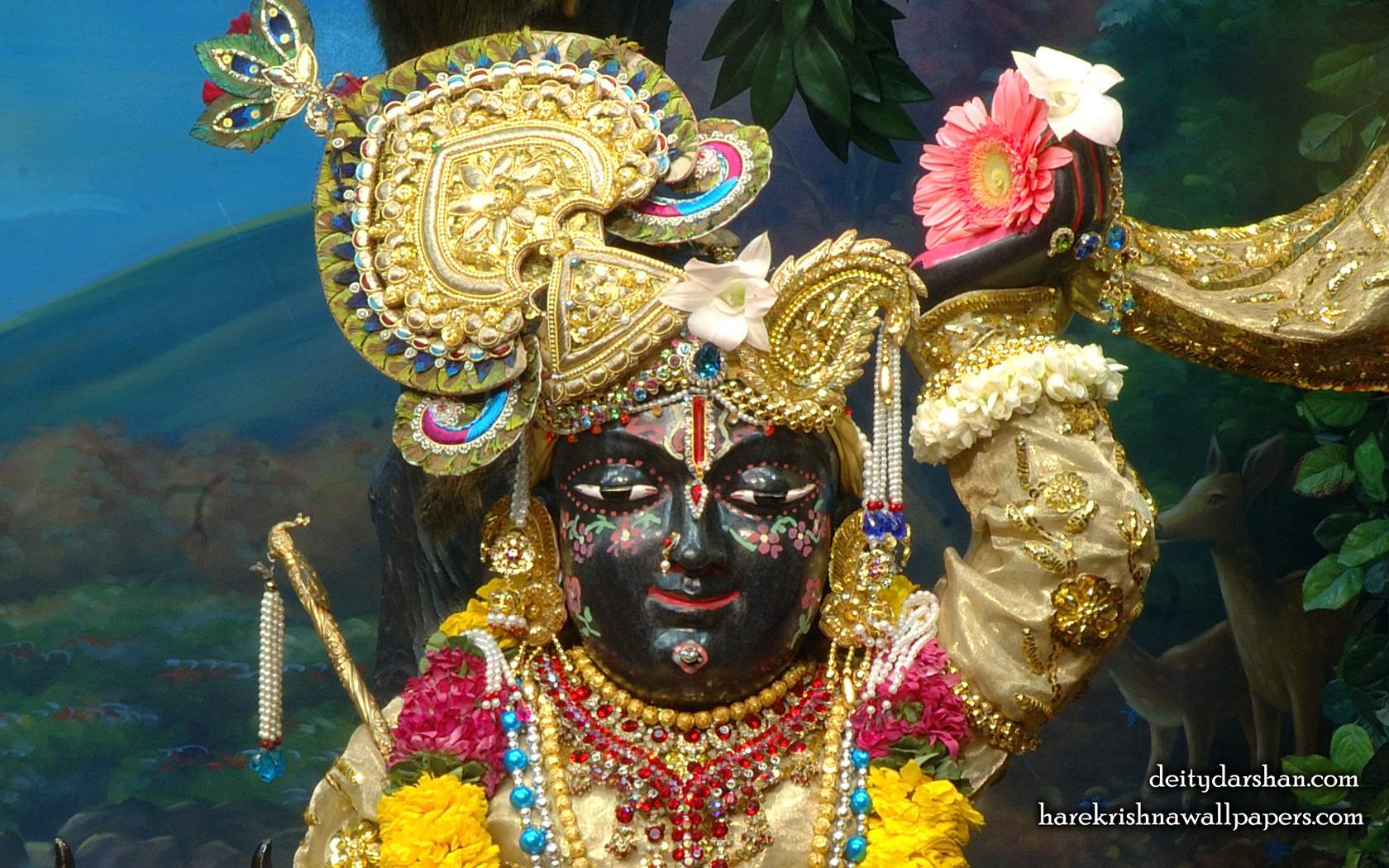 Sri Gopal Close up Wallpaper (023) Size 1680x1050 Download