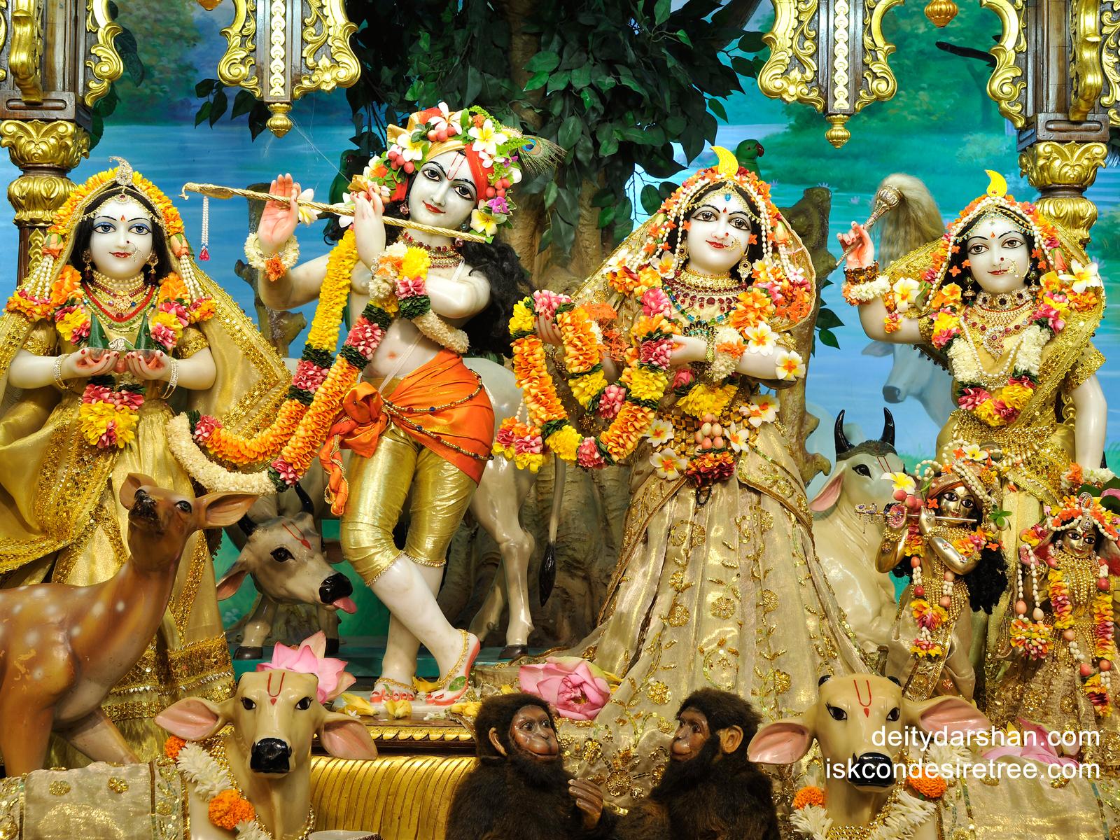 Sri Sri Radha Gopinath Lalita Vishakha Wallpaper (023) Size1600x1200 Download