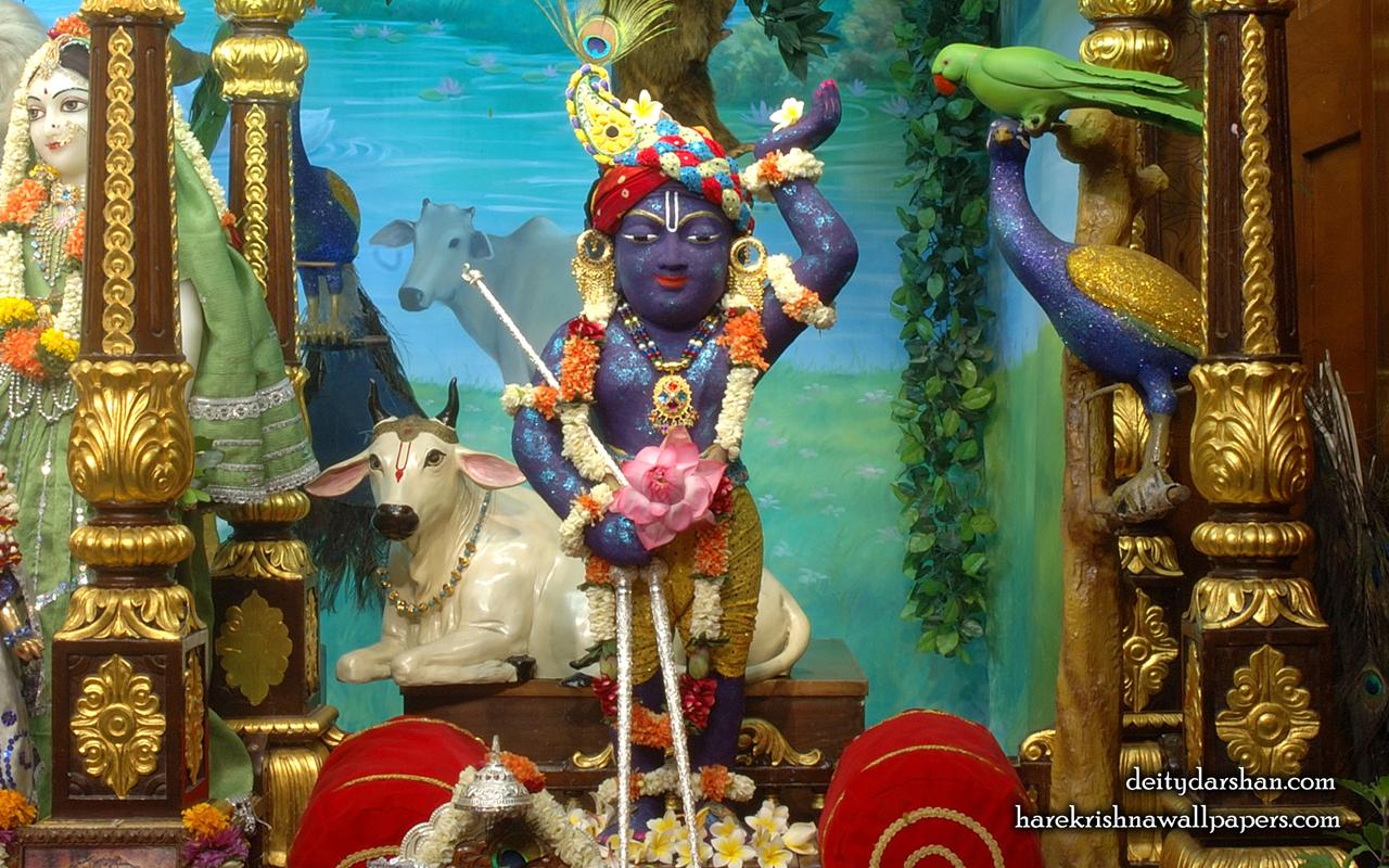 Sri Gopal Wallpaper (024) Size 1280x800 Download