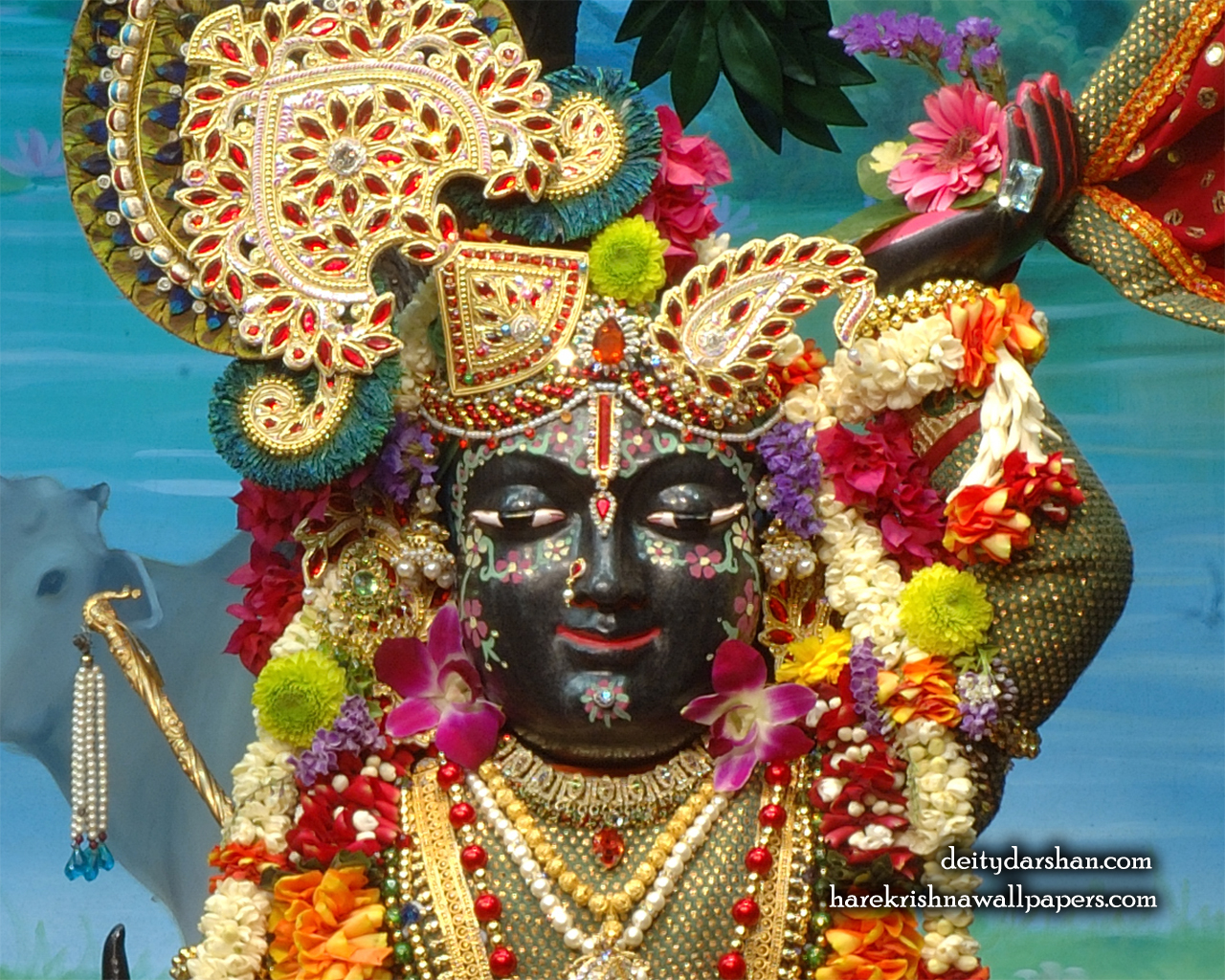 Sri Gopal Close up Wallpaper (024) Size 1280x1024 Download