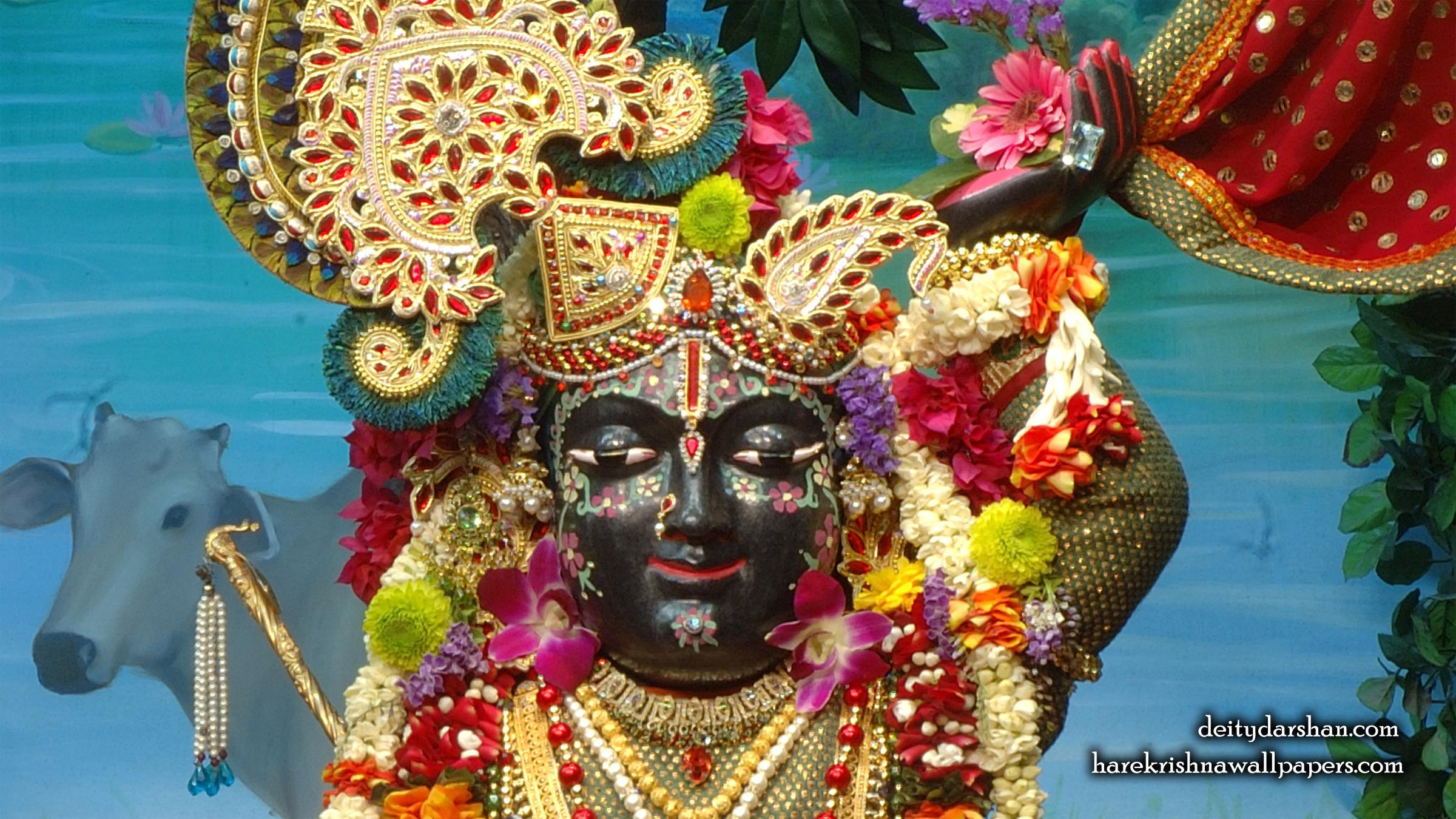 Sri Gopal Close up Wallpaper (024) Size 2400x1350 Download