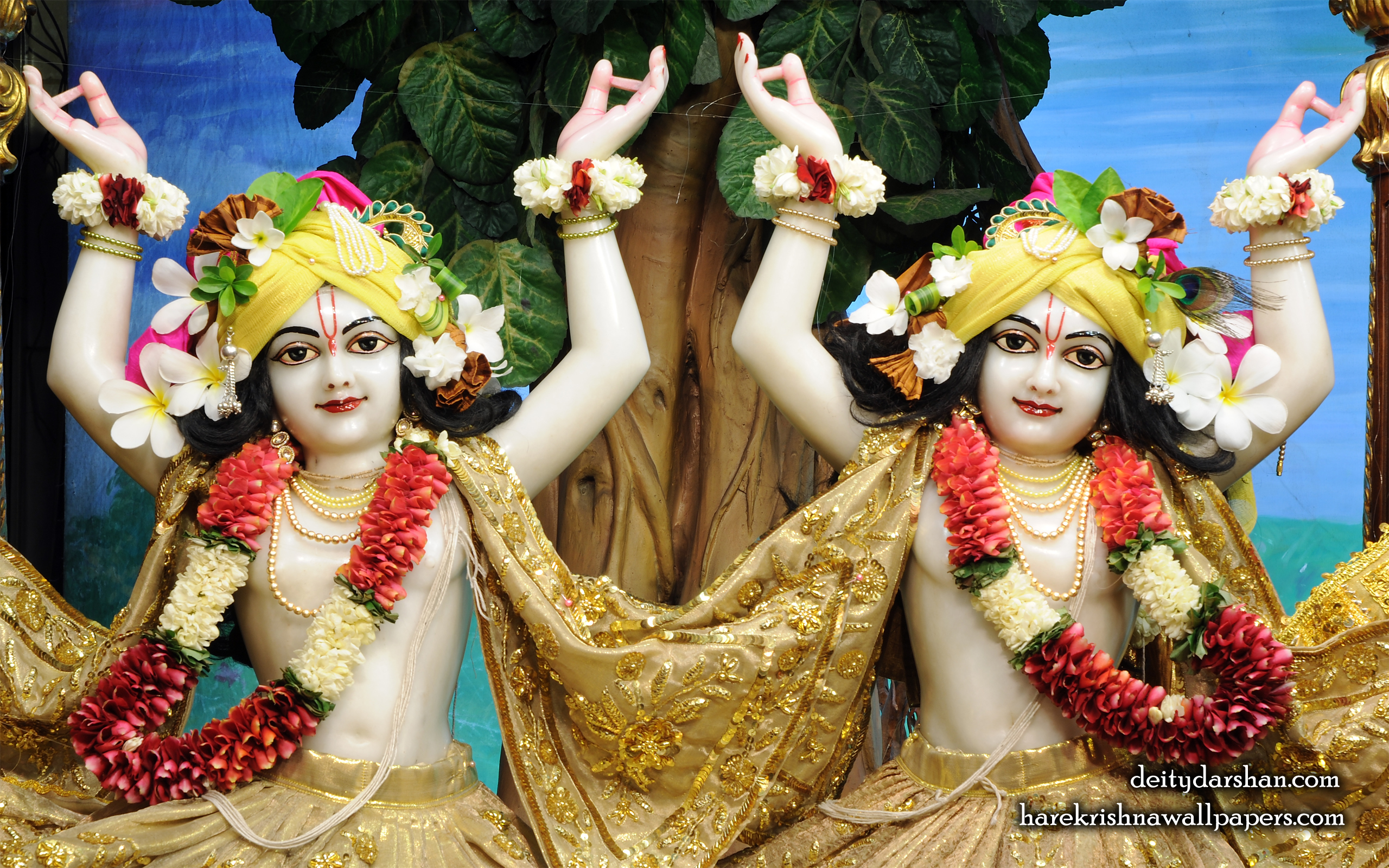 Sri Sri Nitai Gaurachandra Close up Wallpaer (024) Size 2560x1600 Download