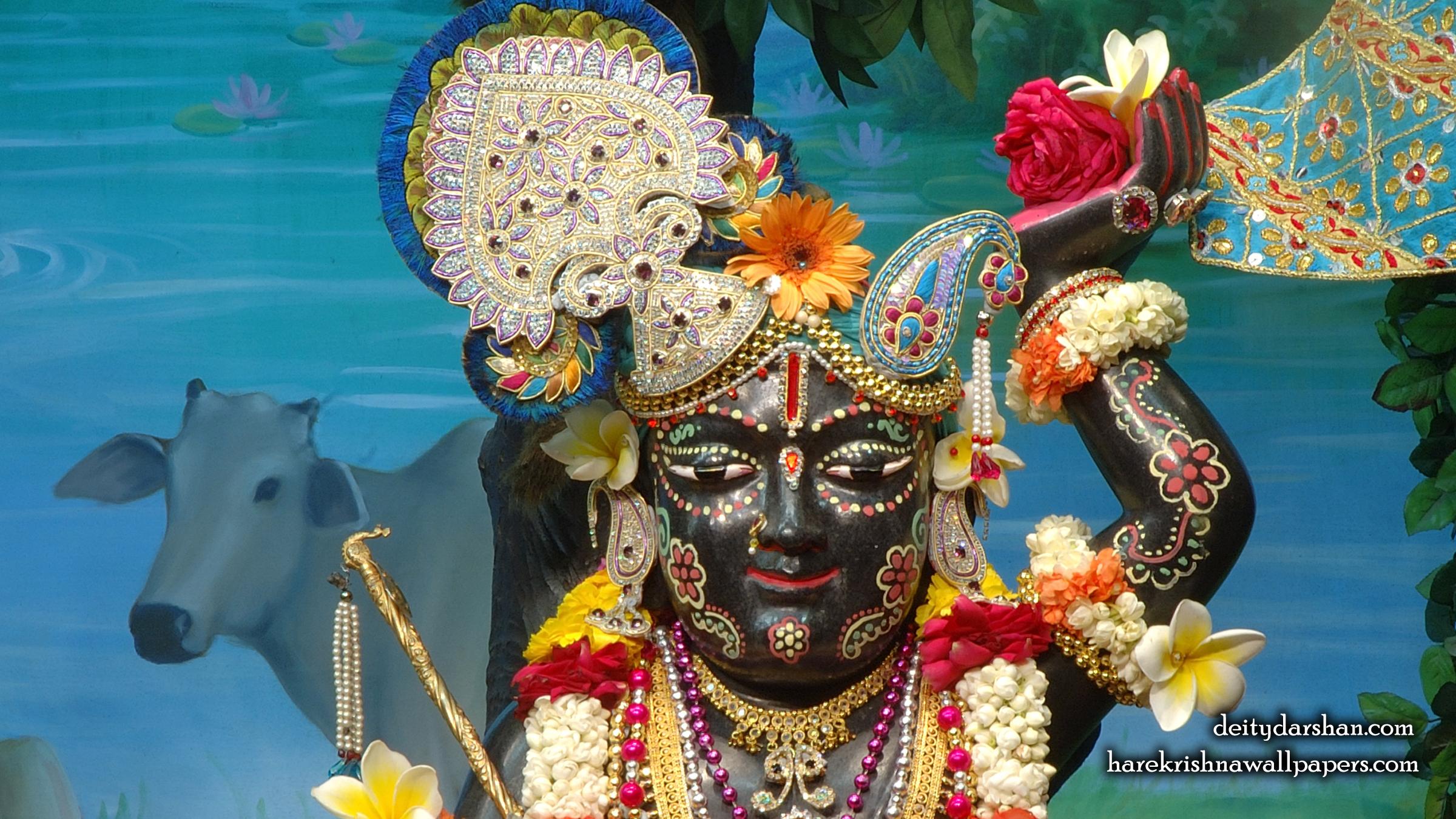 Sri Gopal Close up Wallpaper (025) Size 2400x1350 Download