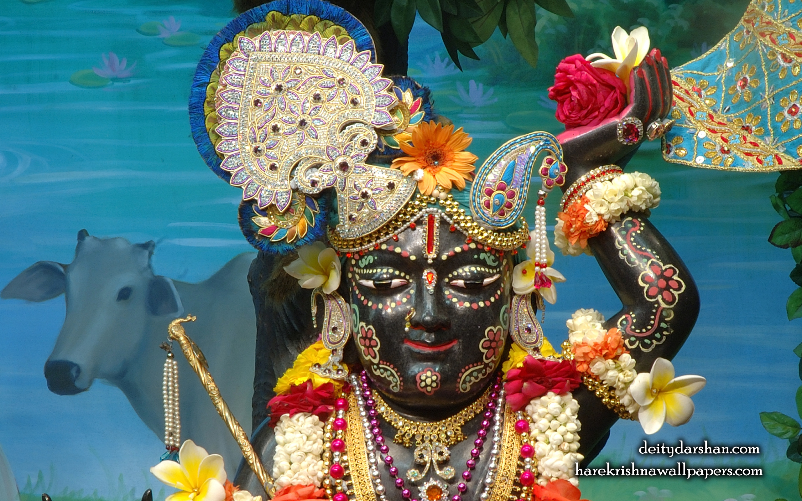 Sri Gopal Close up Wallpaper (025) Size 2560x1600 Download
