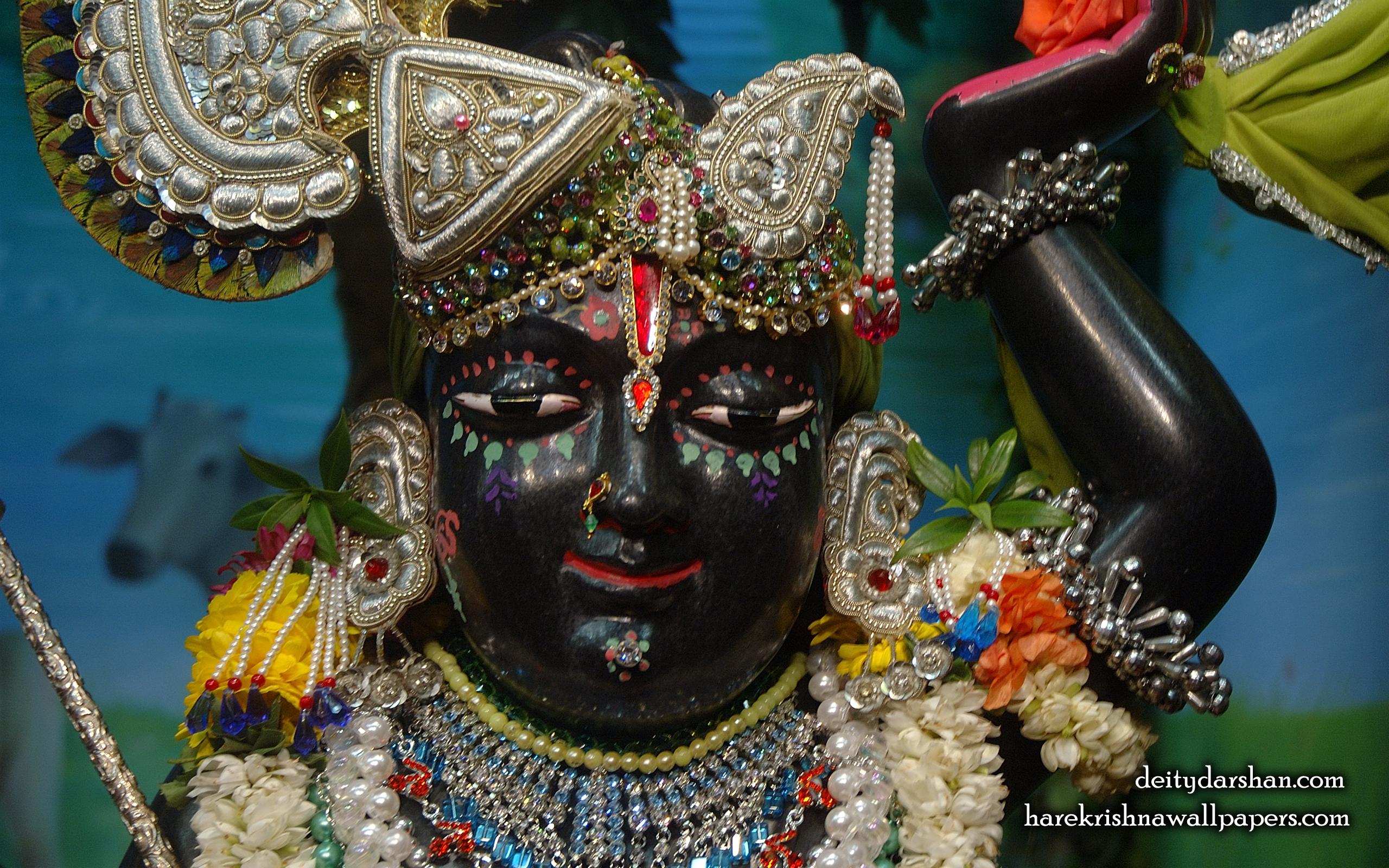 Sri Gopal Close up Wallpaper (026) Size 2560x1600 Download