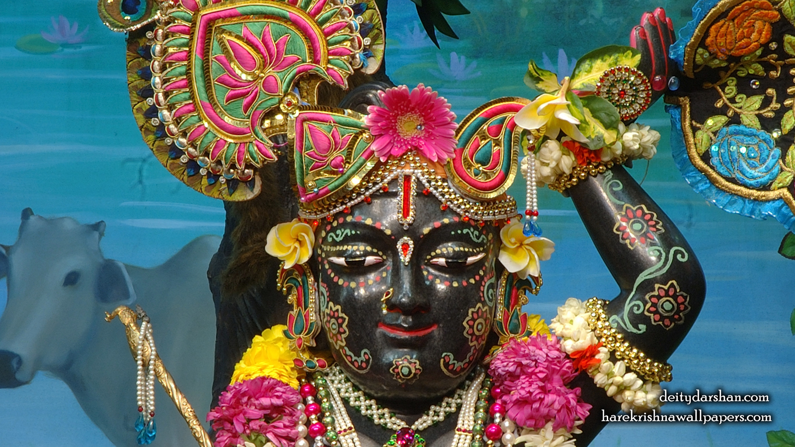 Sri Gopal Close up Wallpaper (028) Size 1600x900 Download