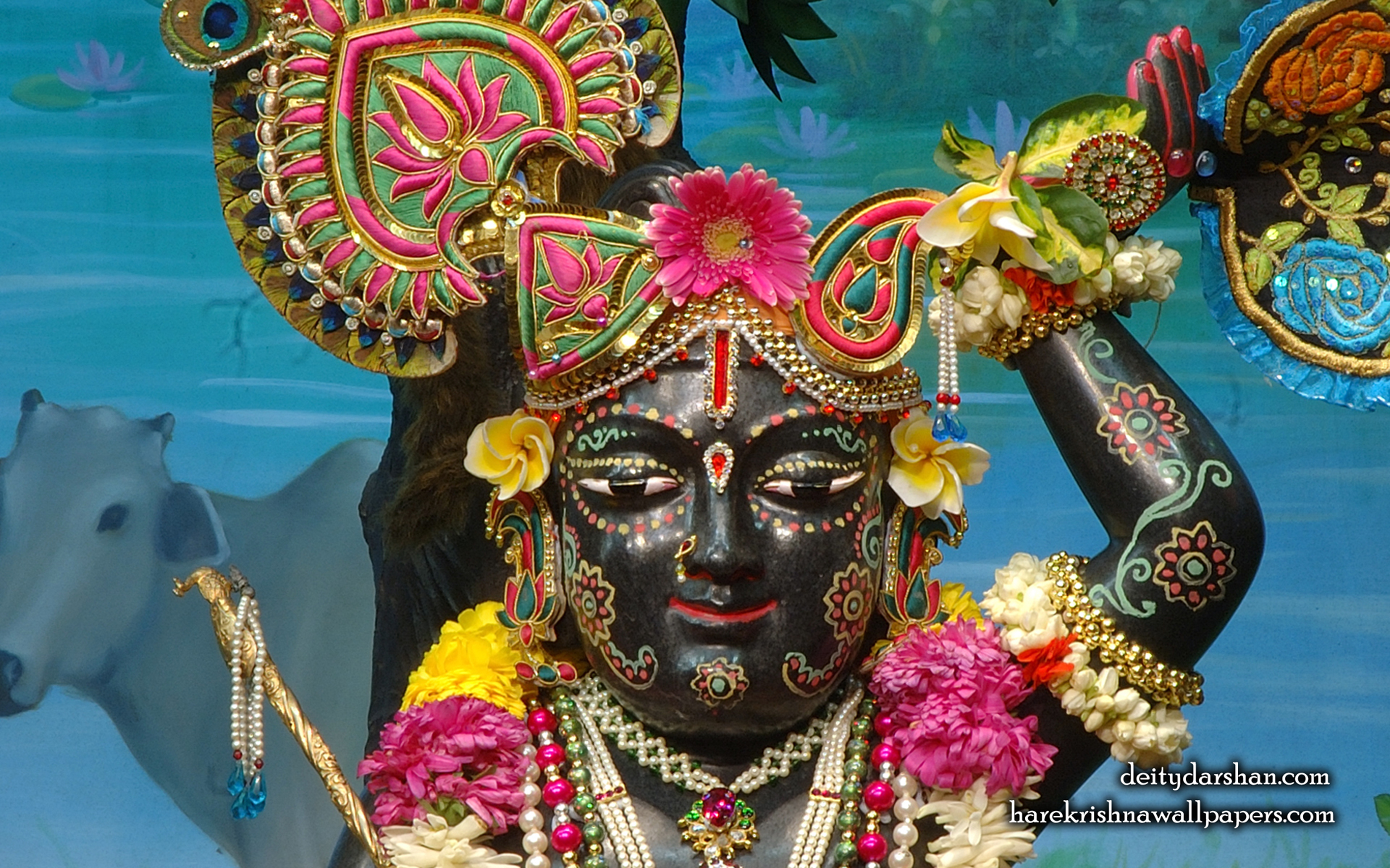 Sri Gopal Close up Wallpaper (028) Size 1920x1200 Download