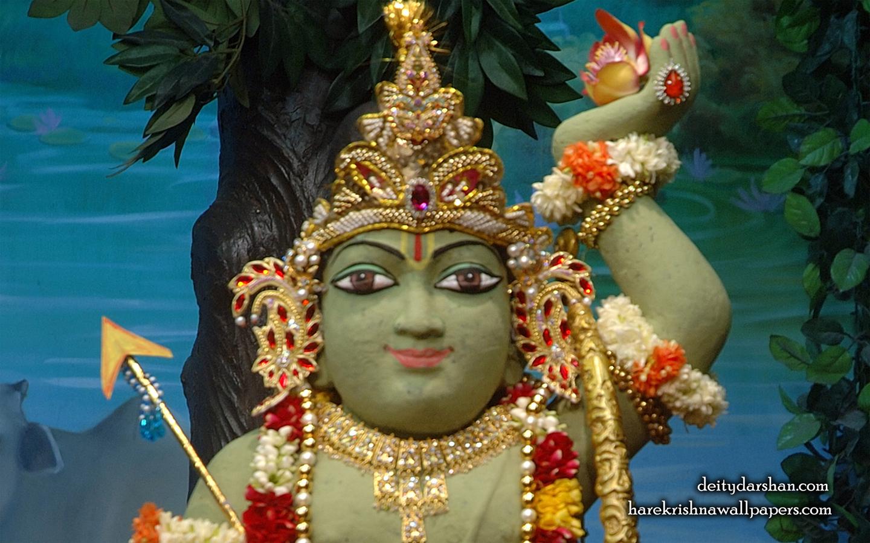 Sri Gopal Close up Wallpaper (029) Size 1440x900 Download