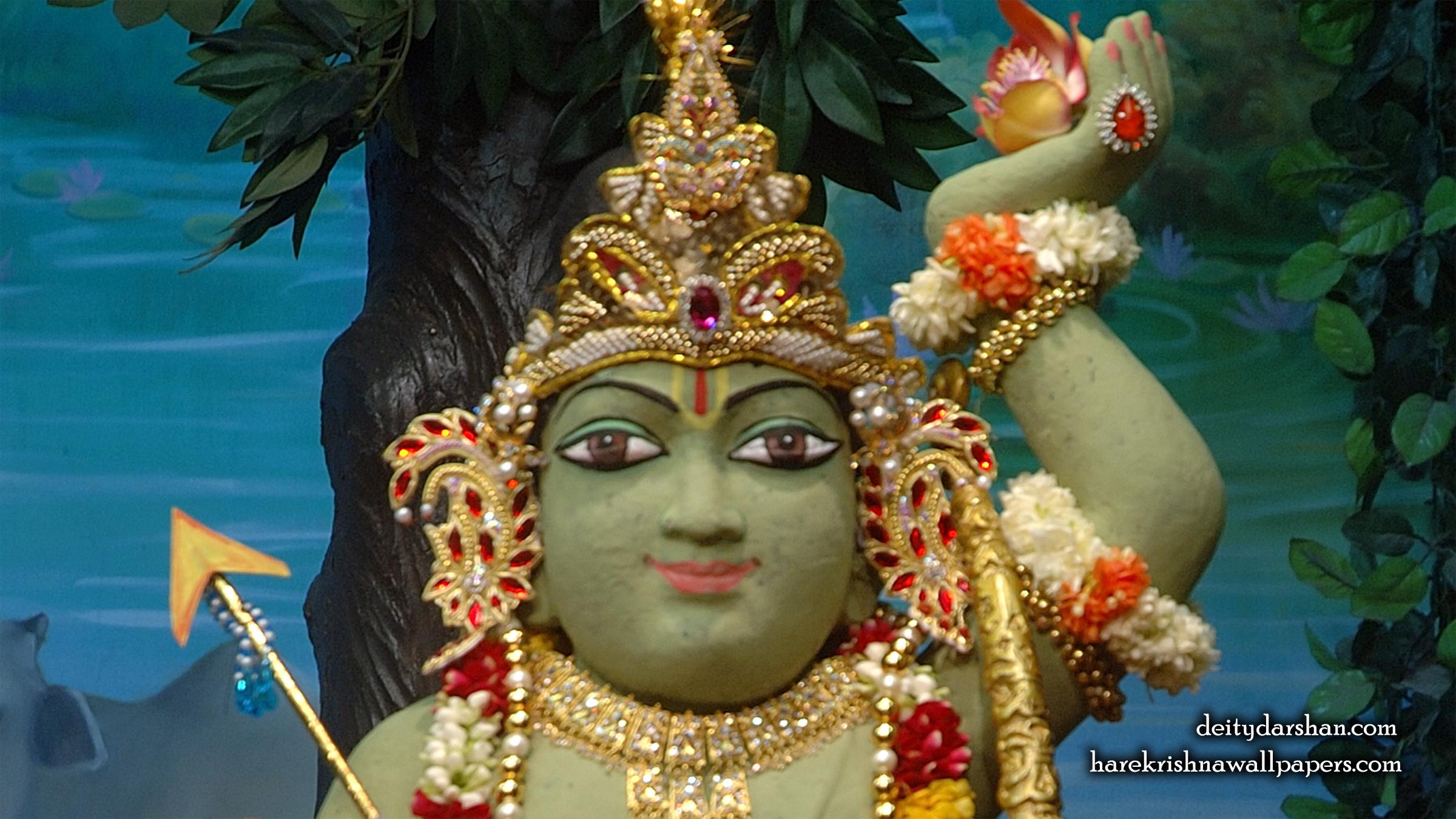 Sri Gopal Close up Wallpaper (029) Size 2400x1350 Download