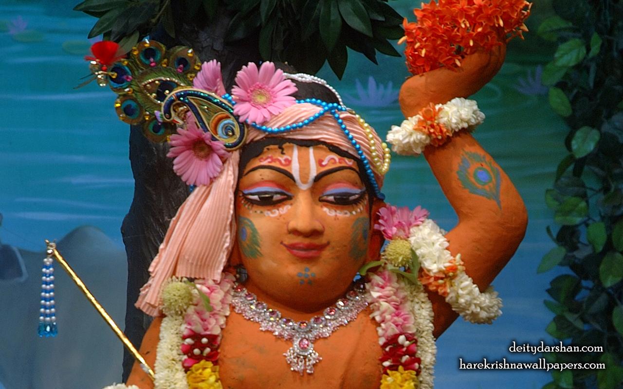 Sri Gopal Close up Wallpaper (030) Size 1280x800 Download