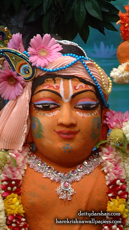 Sri Gopal Close up Wallpaper (030) Size 450x800 Download