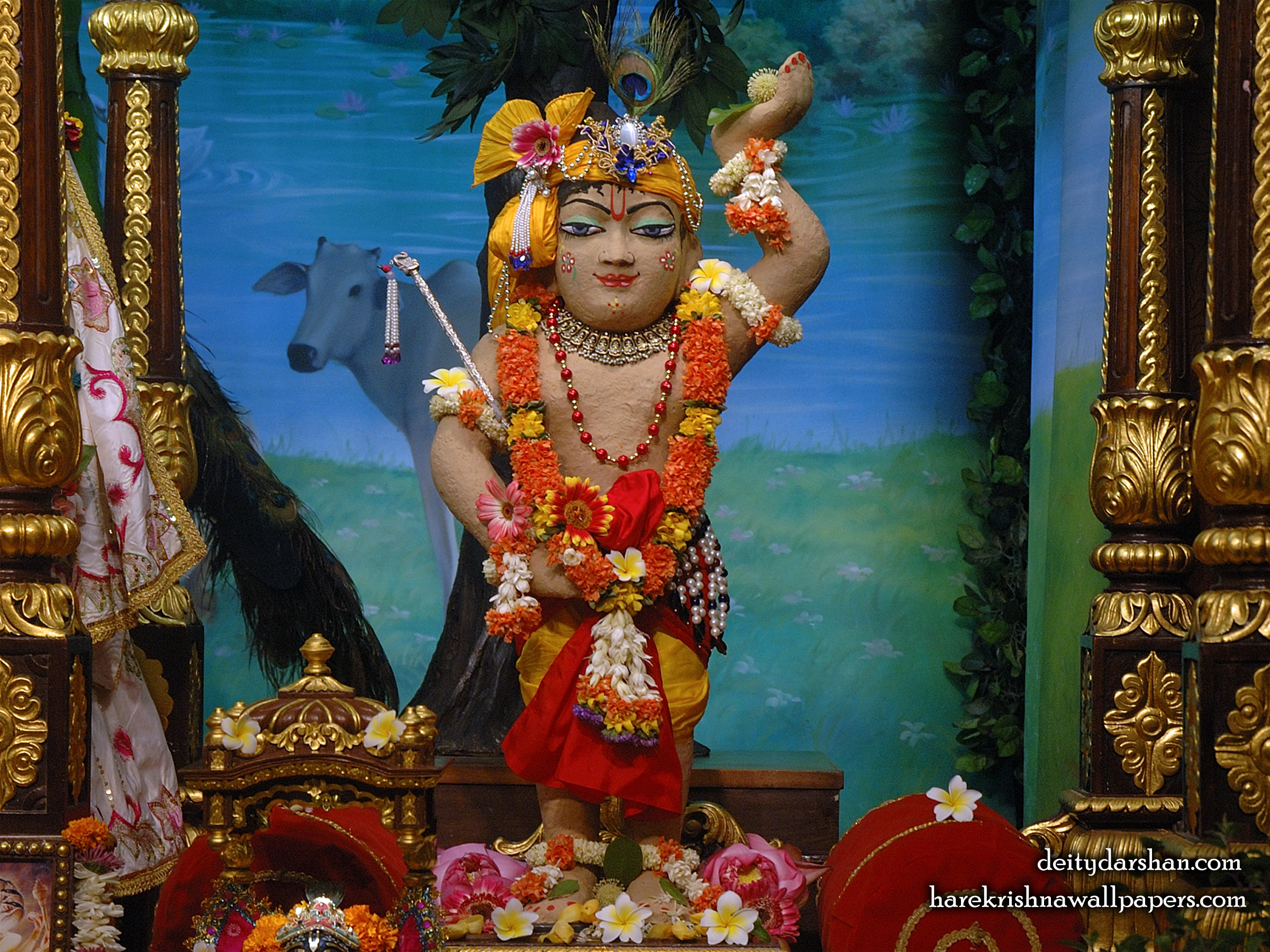 Sri Gopal Wallpaper (031) Size 2400x1800 Download