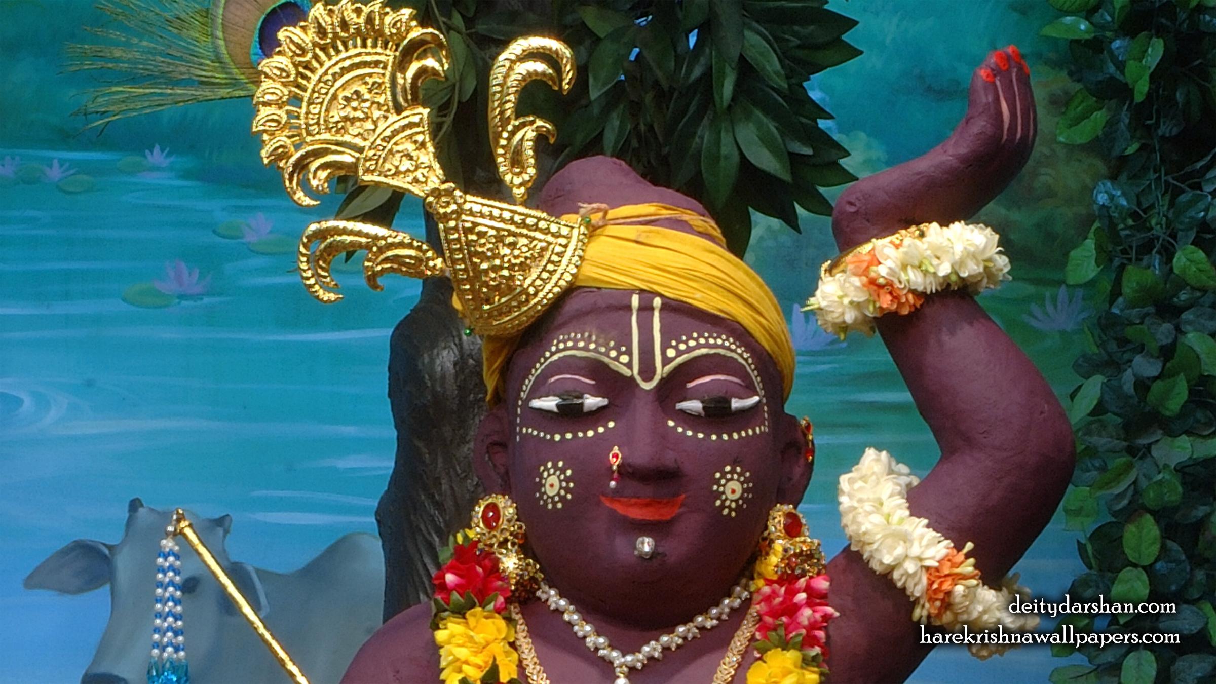 Sri Gopal Close up Wallpaper (031) Size 2400x1350 Download