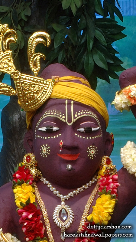 Sri Gopal Close up Wallpaper (031) Size 450x800 Download