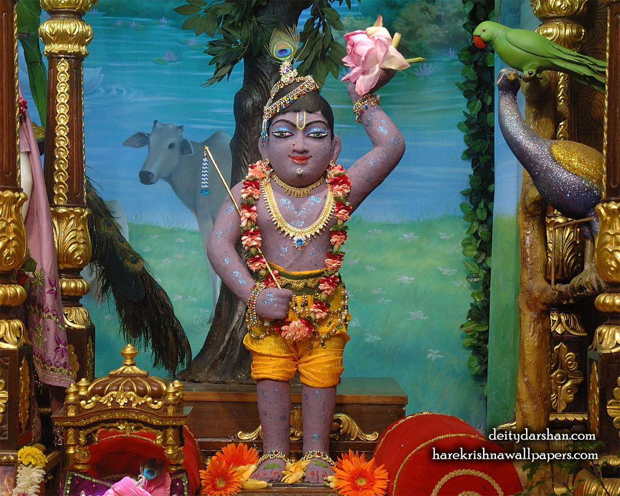 Sri Gopal Wallpaper (032) Size 1280x1024 Download