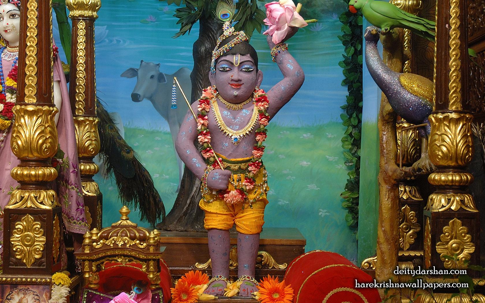 Sri Gopal Wallpaper (032) Size 1680x1050 Download