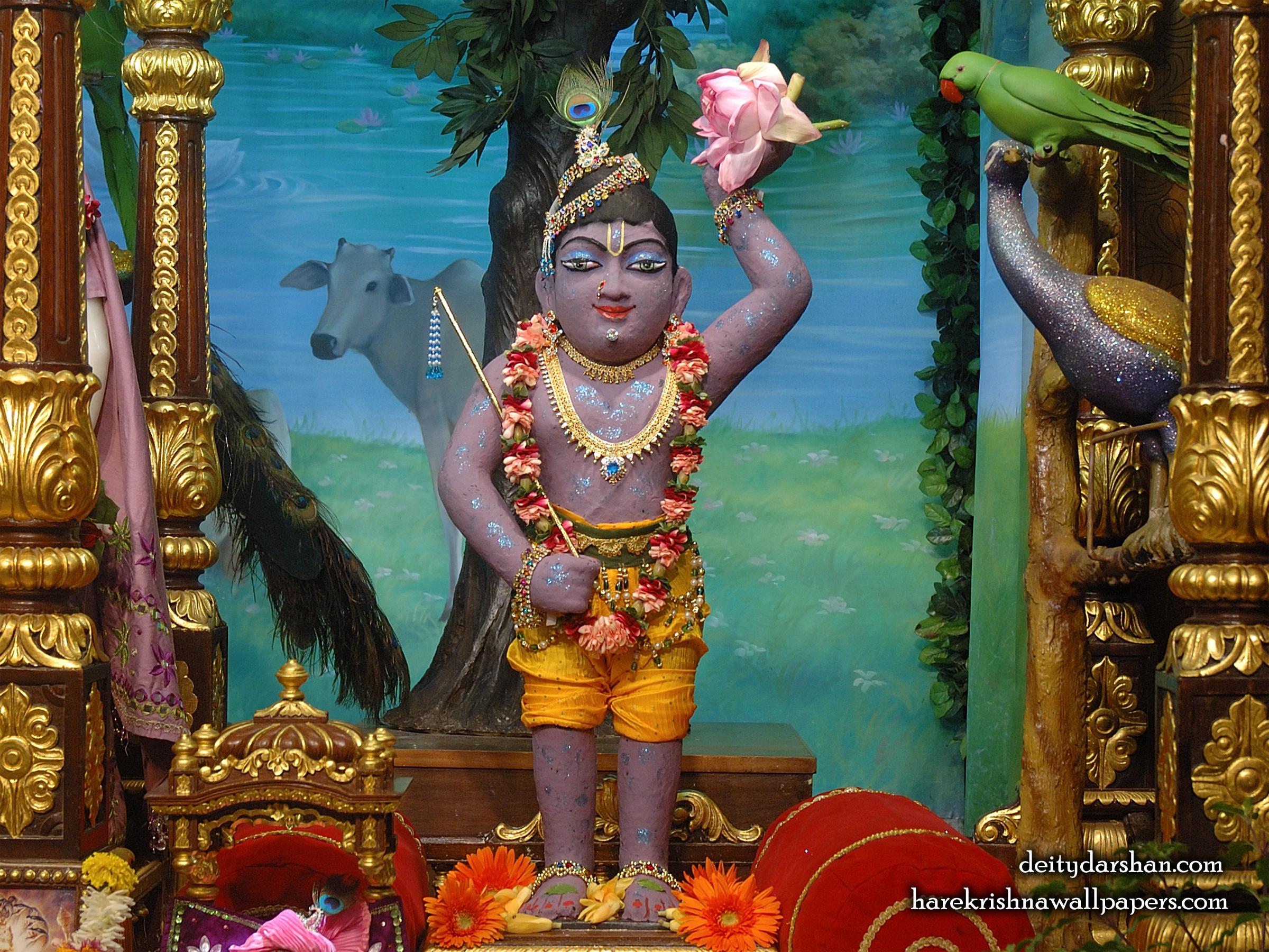 Sri Gopal Wallpaper (032) Size 2400x1800 Download