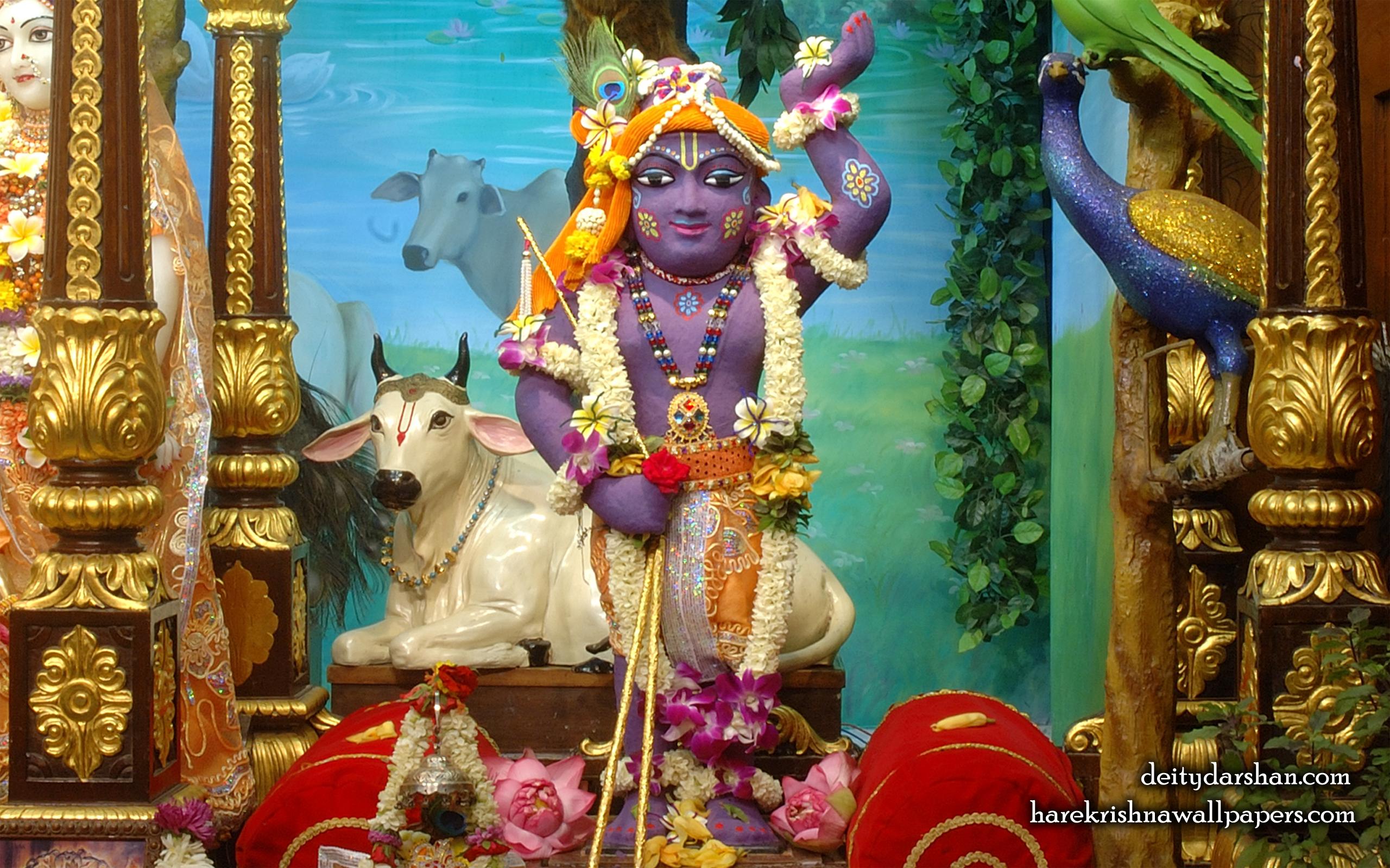 Sri Gopal Wallpaper (033) Size 2560x1600 Download