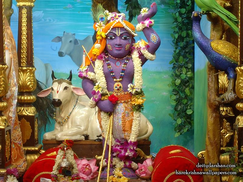 Sri Gopal Wallpaper (033) Size 800x600 Download