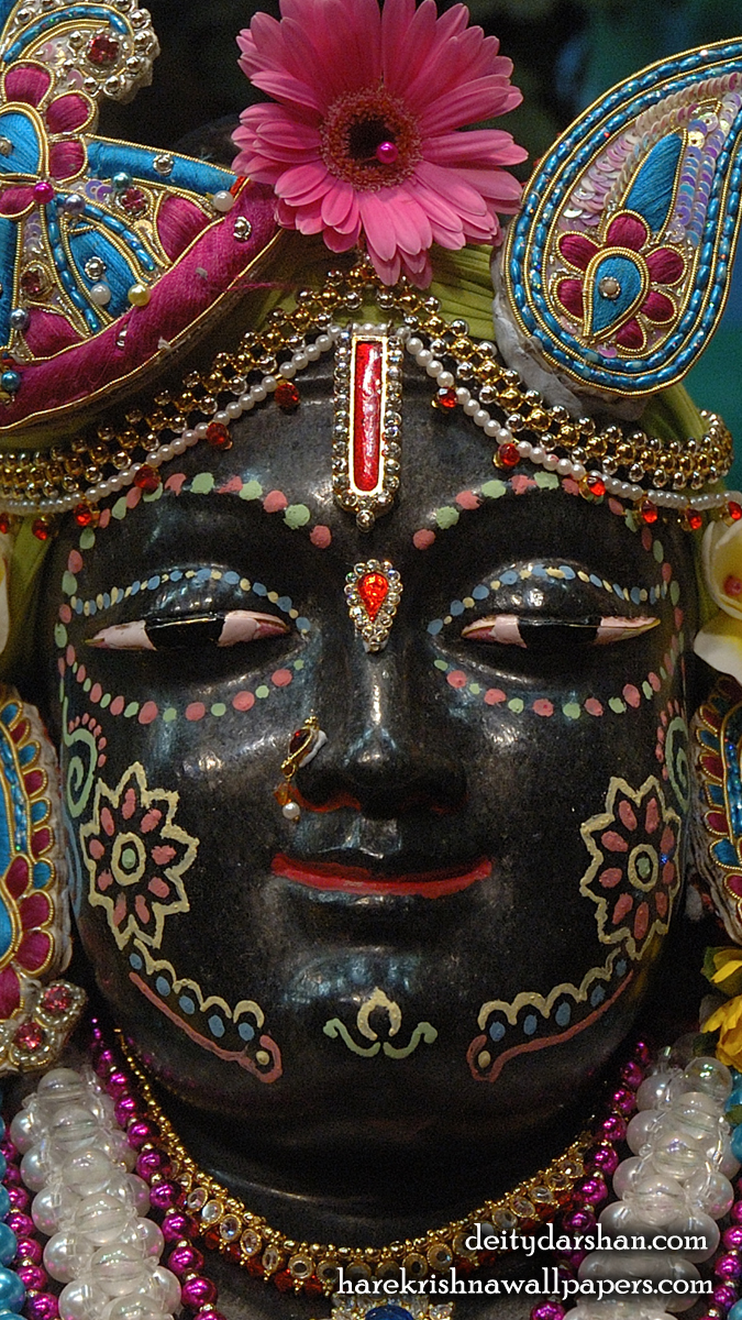 Sri Gopal Close up Wallpaper (033) Size 675x1200 Download