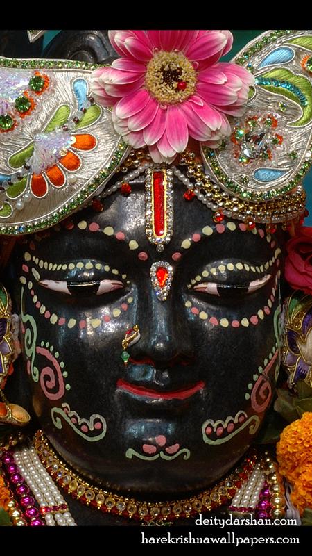 Sri Gopal Close up Wallpaper (034) Size 450x800 Download