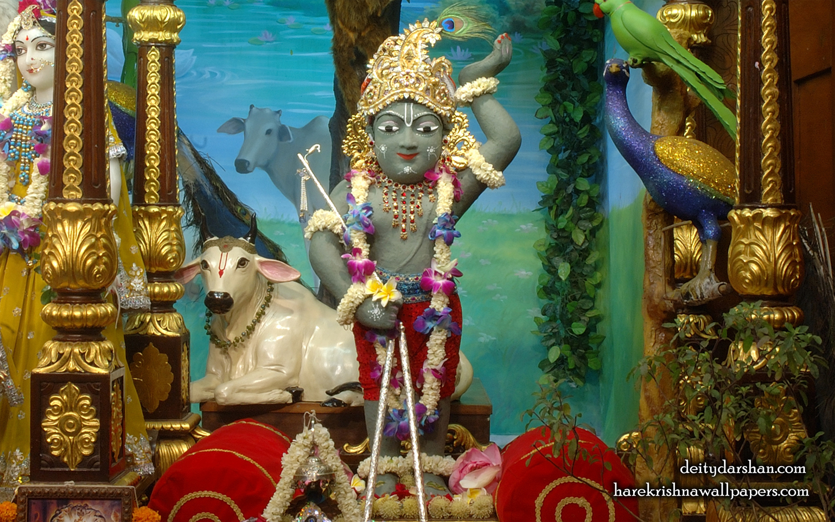 Sri Gopal Wallpaper (035) Size 1680x1050 Download