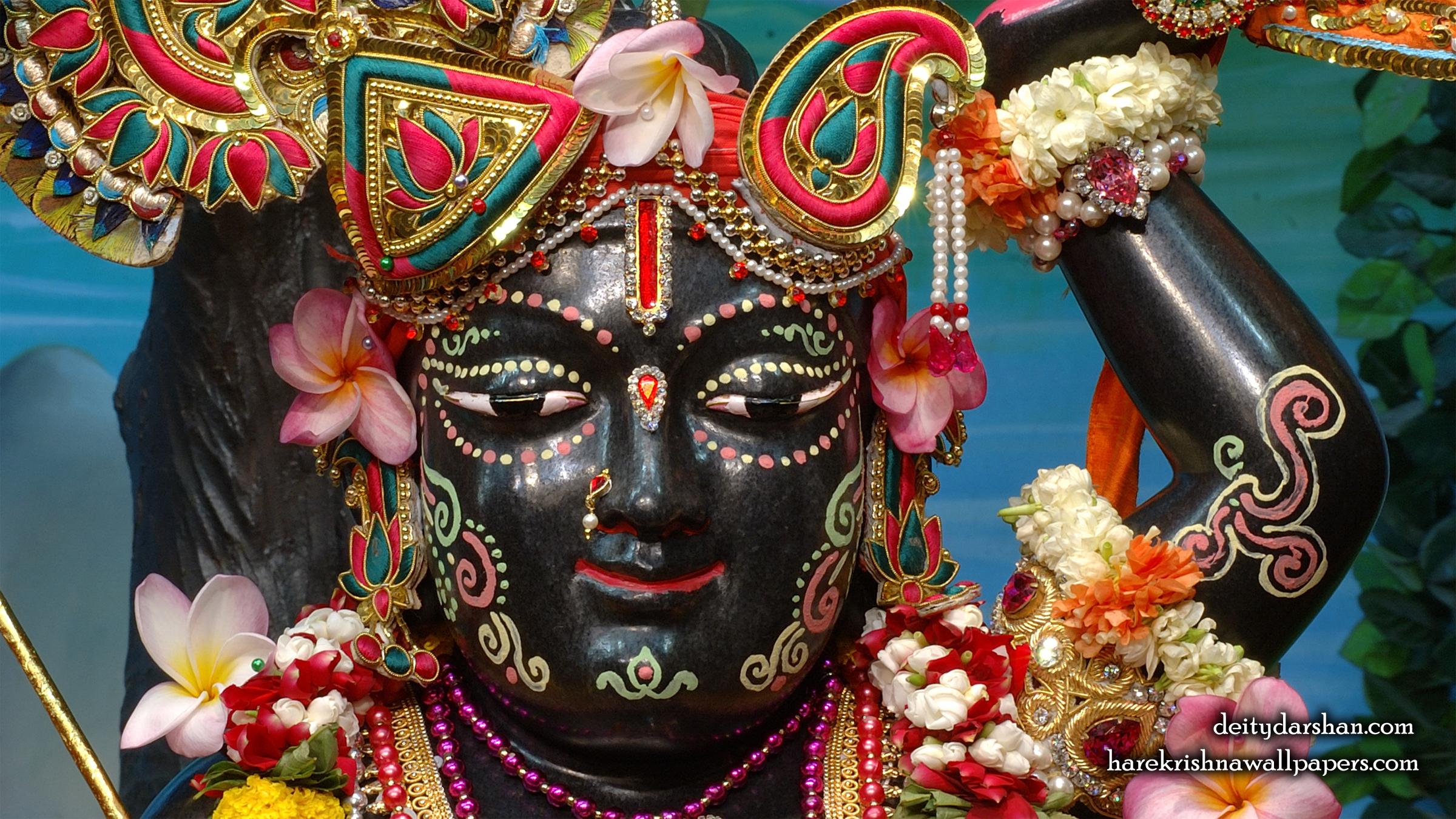 Sri Gopal Close up Wallpaper (035) Size 2400x1350 Download
