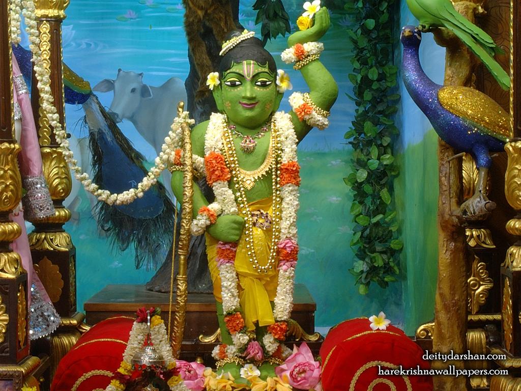 Sri Gopal Wallpaper (036) Size 1024x768 Download