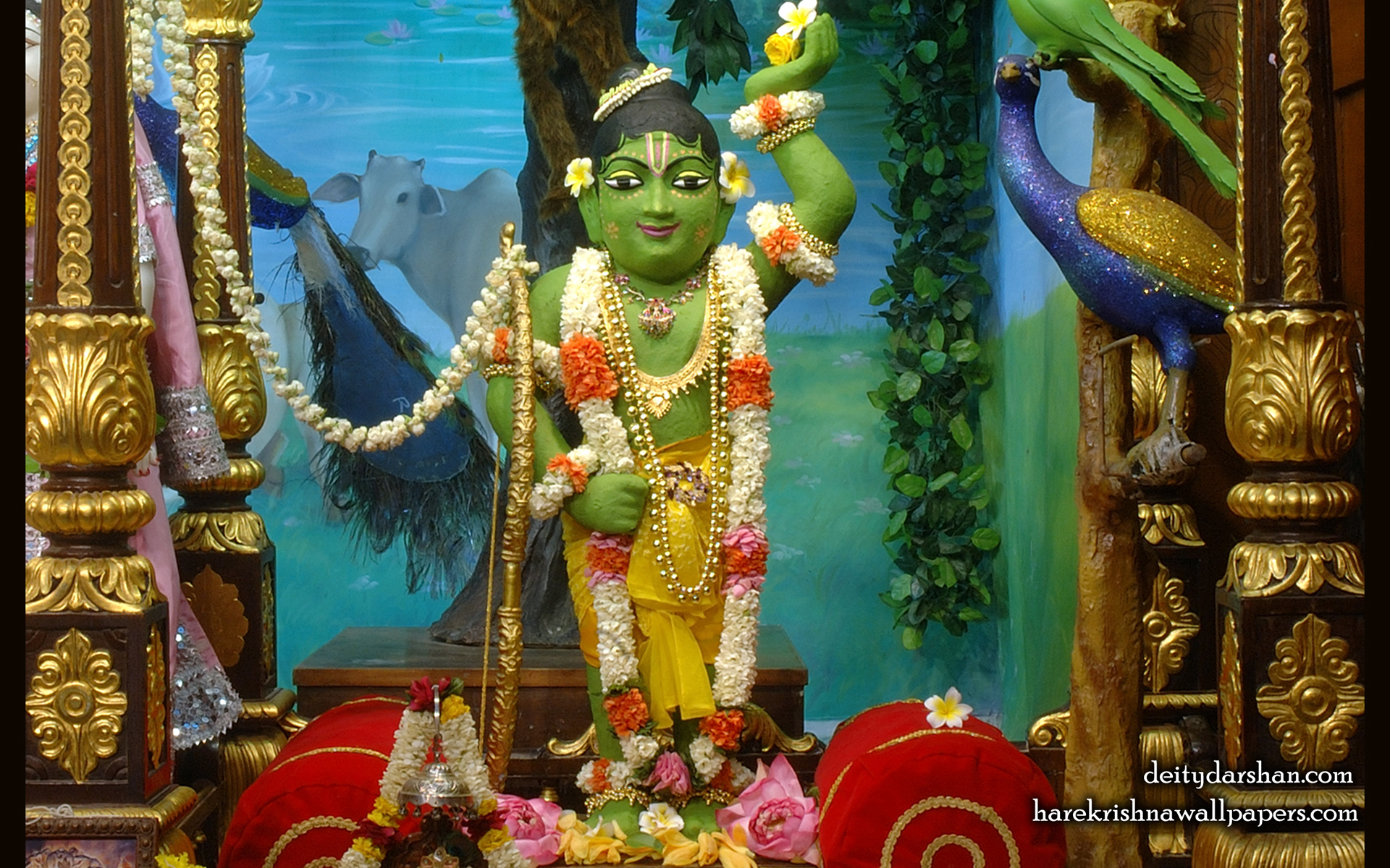 Sri Gopal Wallpaper (036) Size 1920x1200 Download
