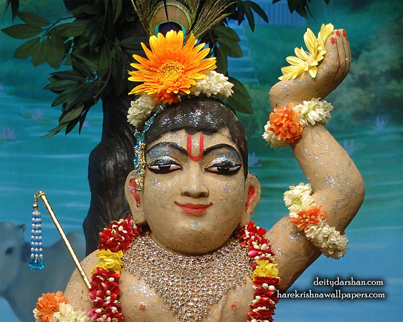 Sri Gopal Close up Wallpaper (036) Size 1280x1024 Download