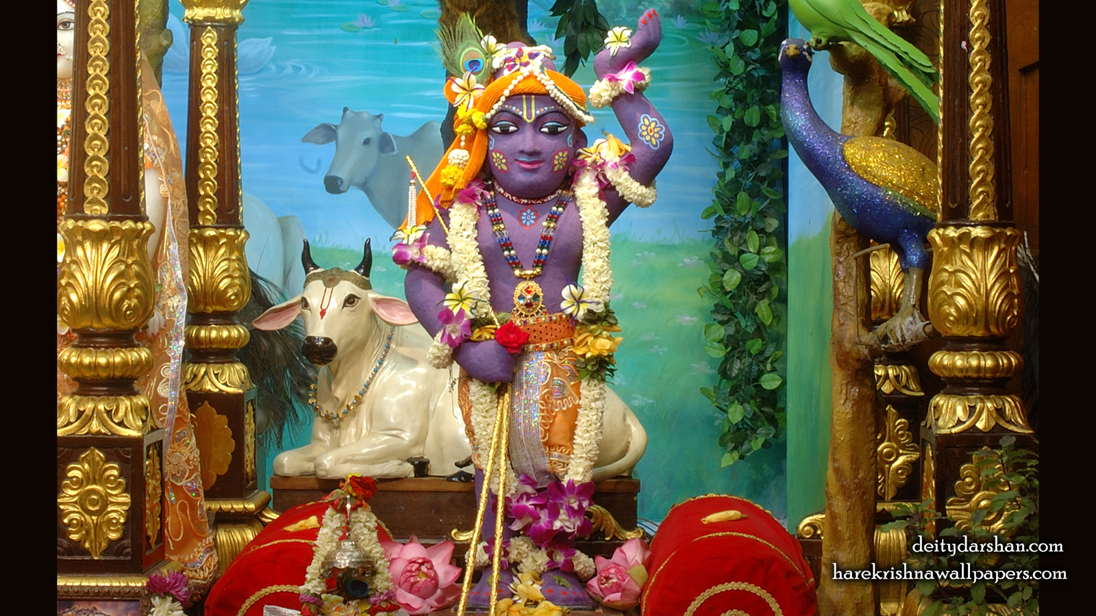 Sri Gopal Wallpaper (037) Size 1600x900 Download