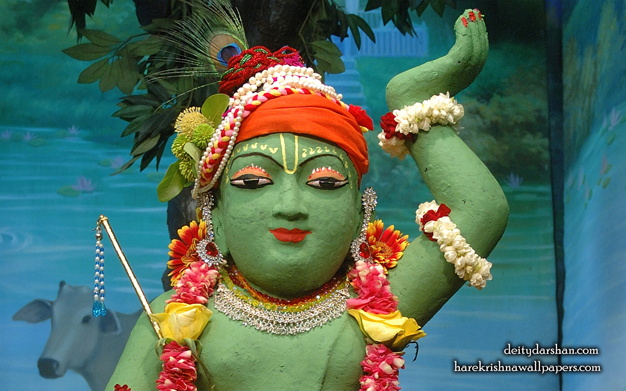 Sri Gopal Close up Wallpaper (037) Size 1280x800 Download