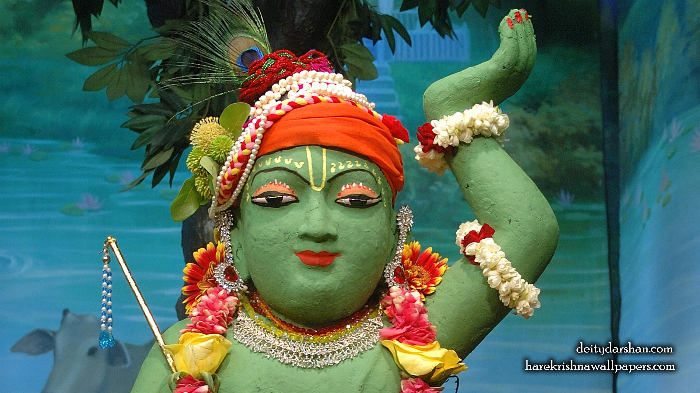 Sri Gopal Close up Wallpaper (037) Size 2400x1350 Download