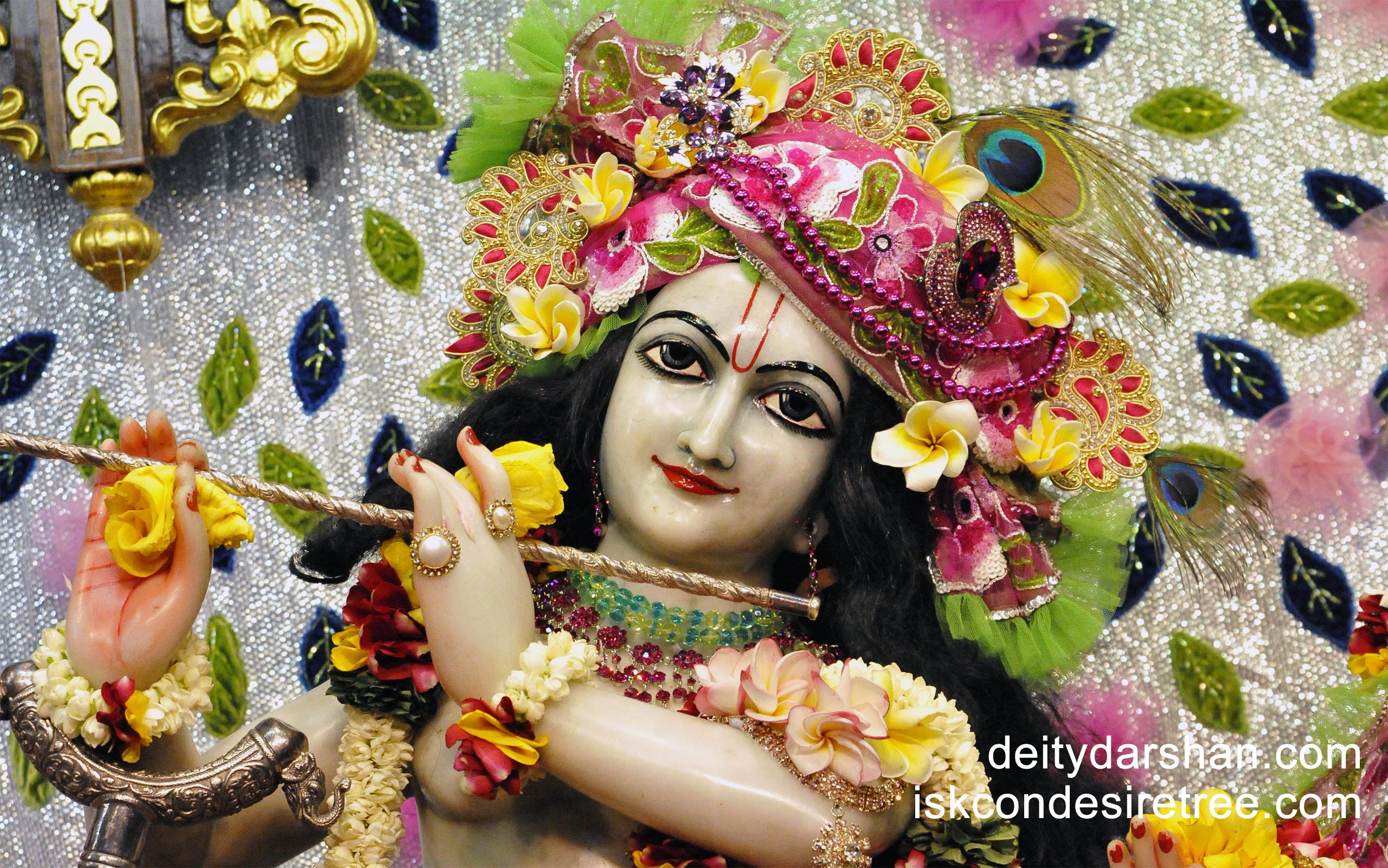 Sri Gopinath Close up Wallpaper (037) Size 2560x1600 Download