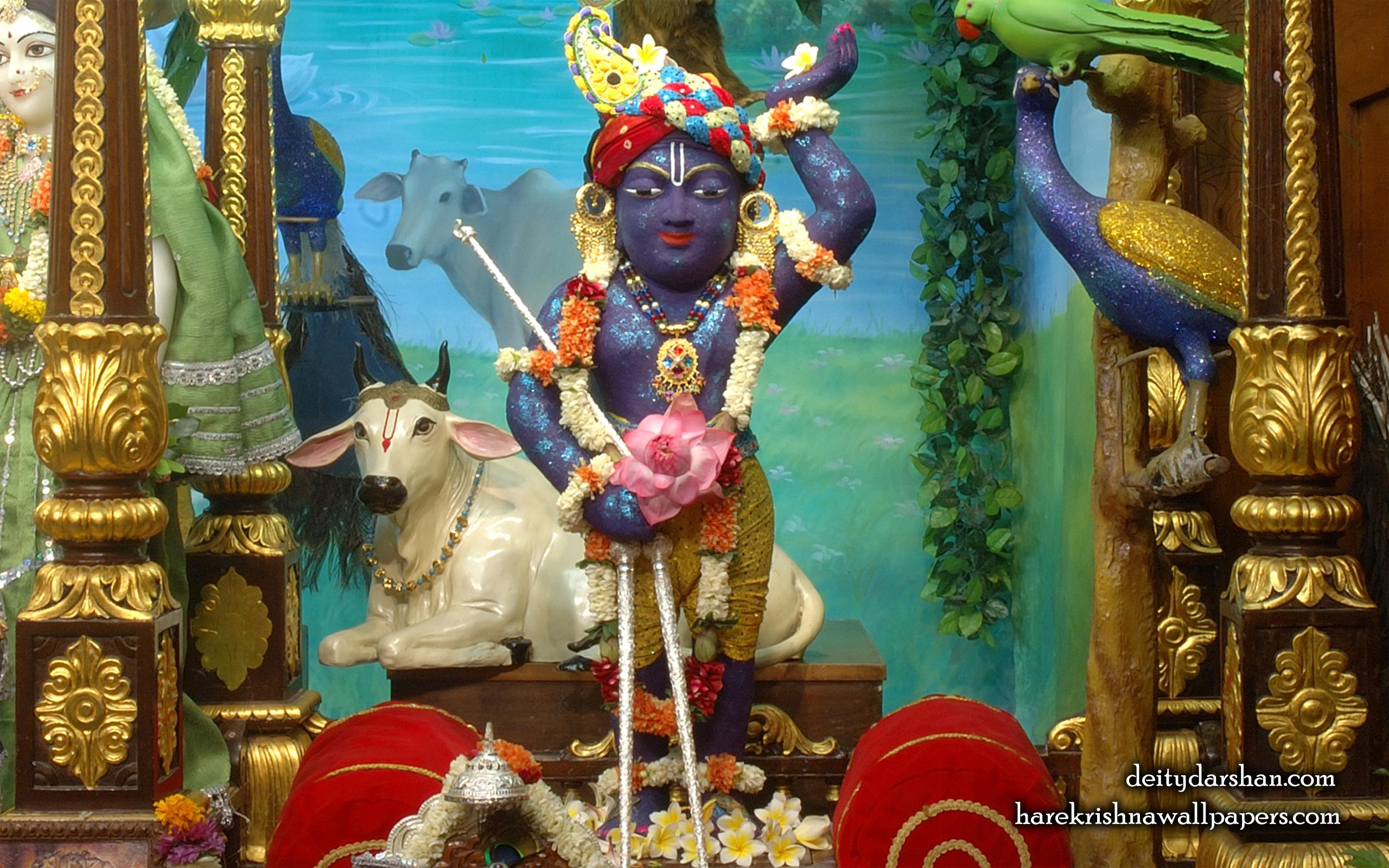 Sri Gopal Wallpaper (038) Size 2560x1600 Download