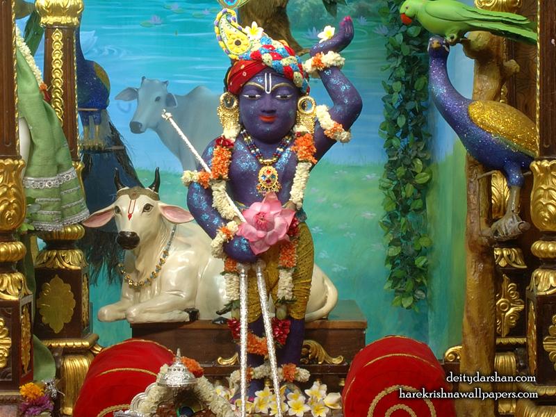 Sri Gopal Wallpaper (038) Size 800x600 Download