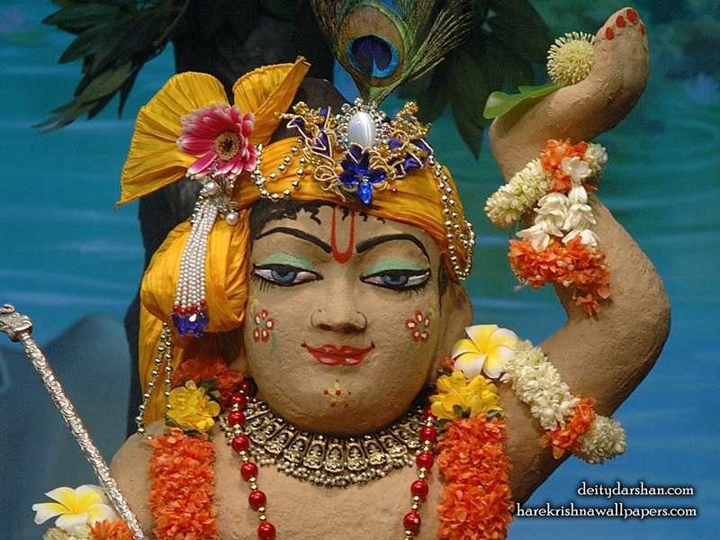 Sri Gopal Close up Wallpaper, Hare Krishna Wallpapers, Srinath Ji wallpapers