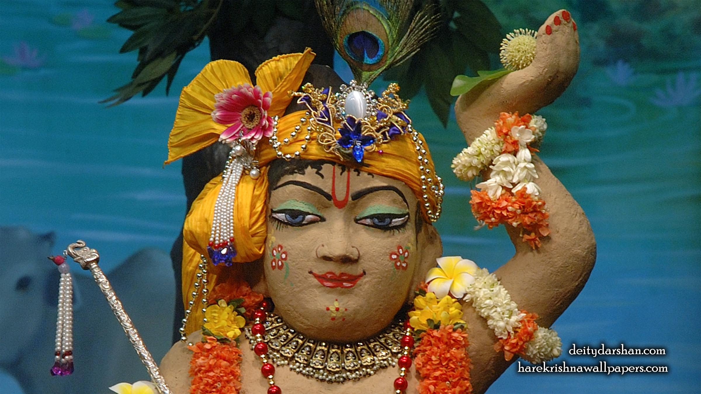 Sri Gopal Close up Wallpaper (039) Size 2400x1350 Download