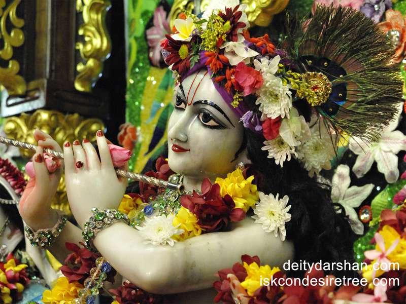Sri Gopinath Close up Wallpaper  (039)