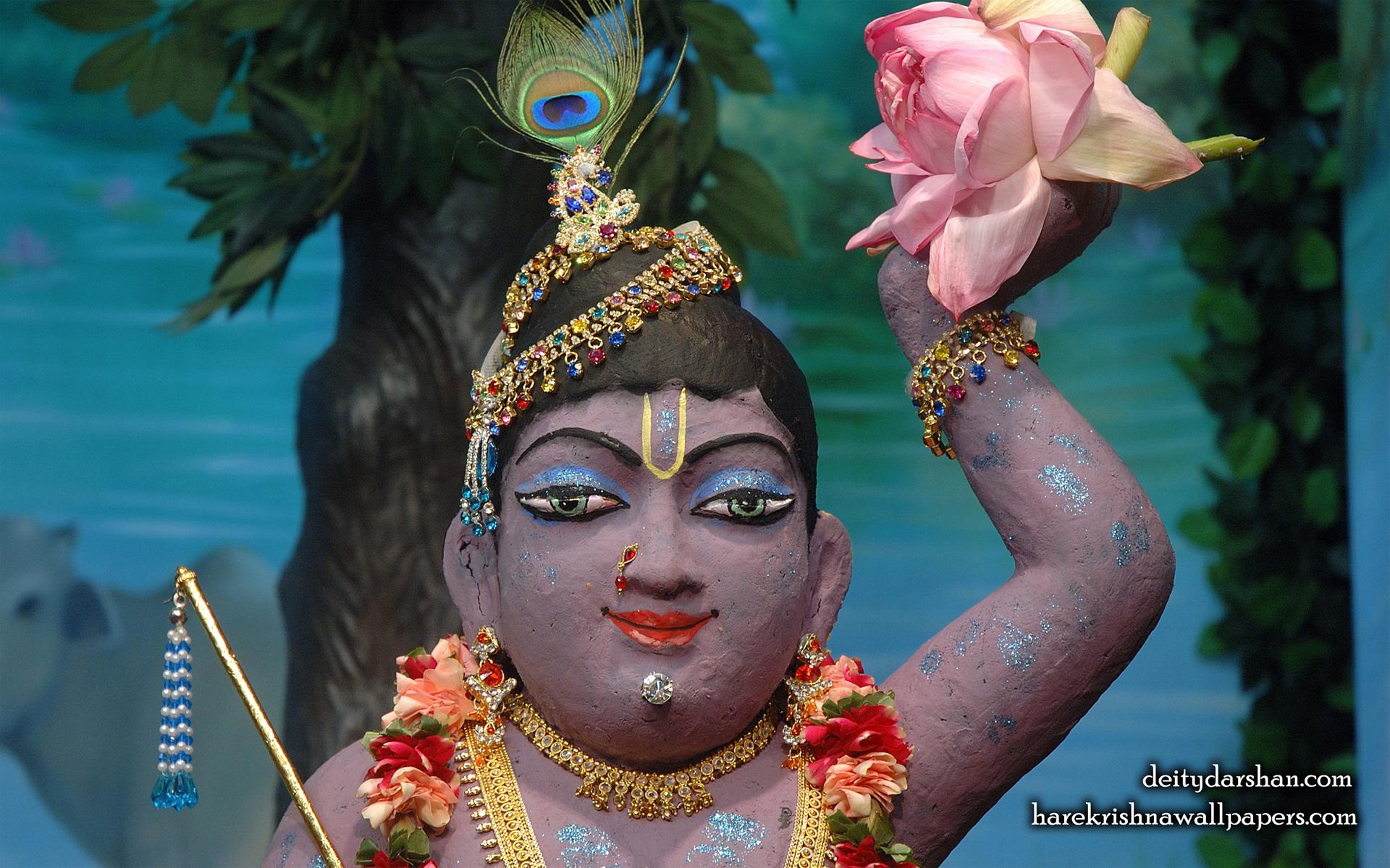 Sri Gopal Close up Wallpaper (040) Size 1920x1200 Download