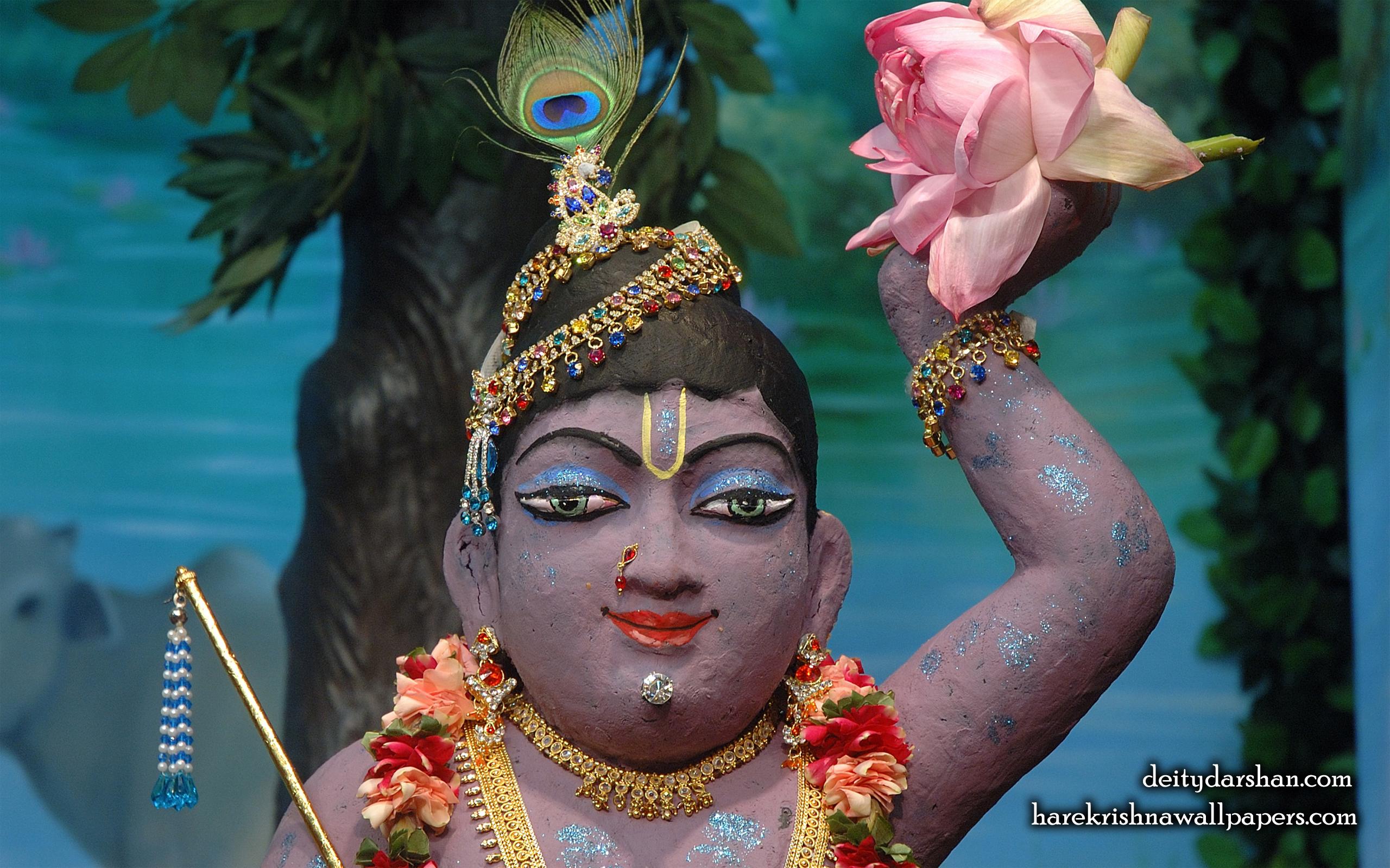 Sri Gopal Close up Wallpaper (040) Size 2560x1600 Download