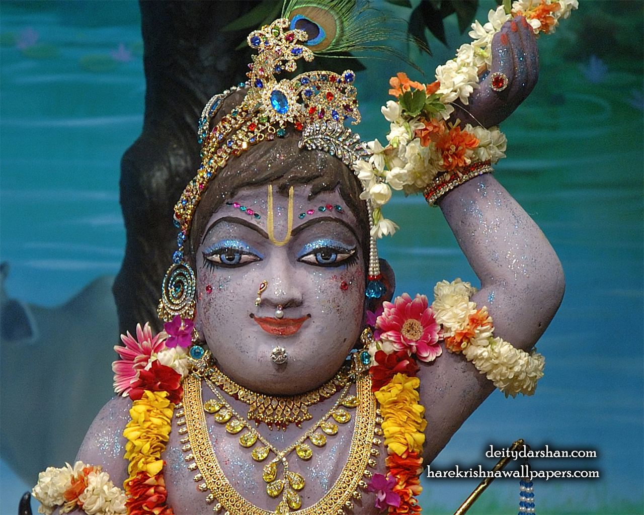 Sri Gopal Close up Wallpaper (041) Size 1280x1024 Download