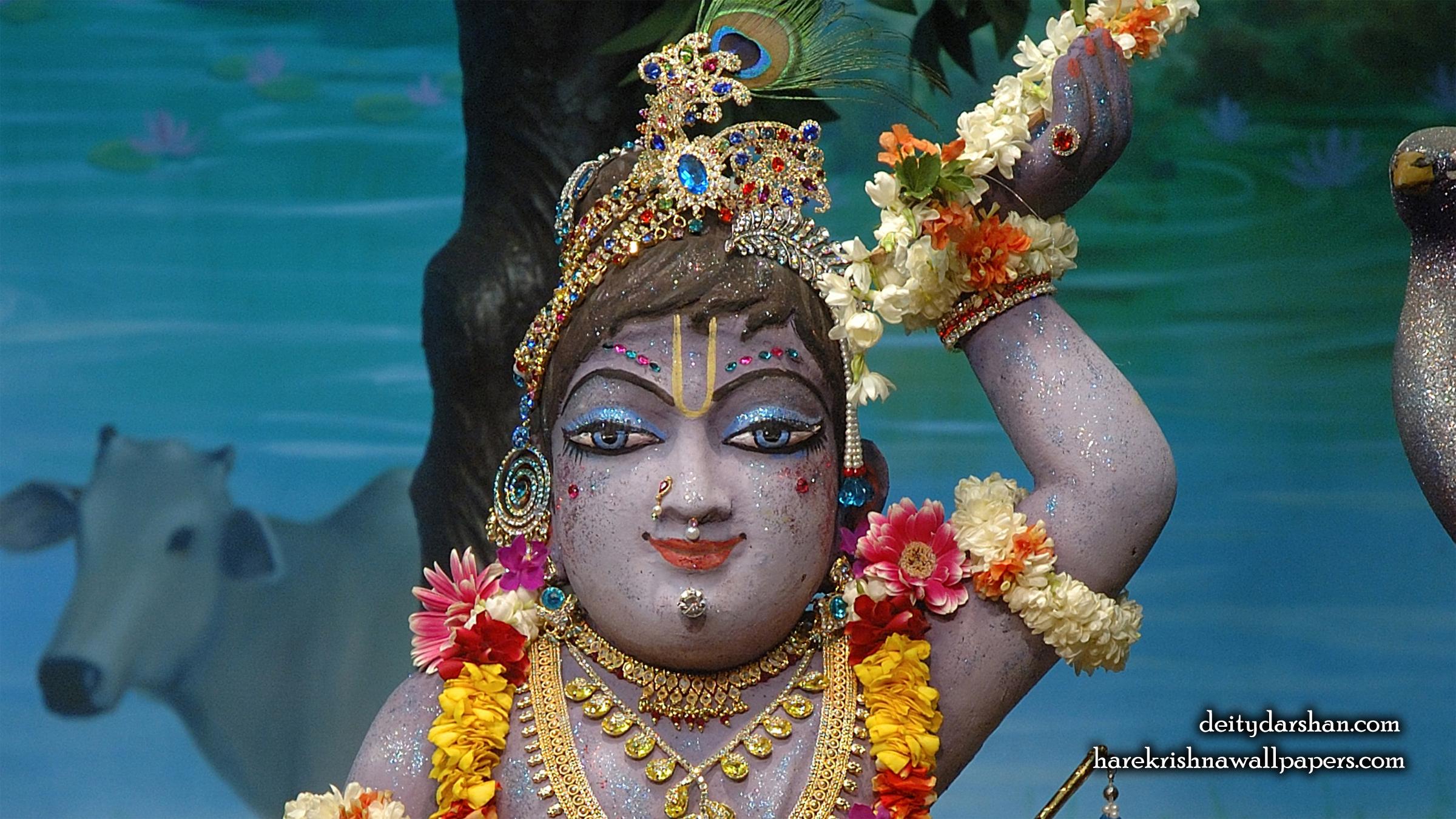 Sri Gopal Close up Wallpaper (041) Size 2400x1350 Download