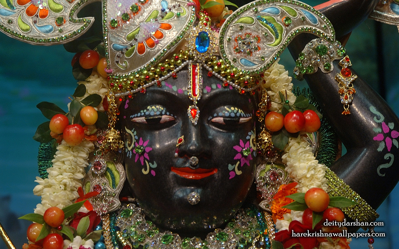 Sri Gopal Close up Wallpaper (044) Size 1440x900 Download